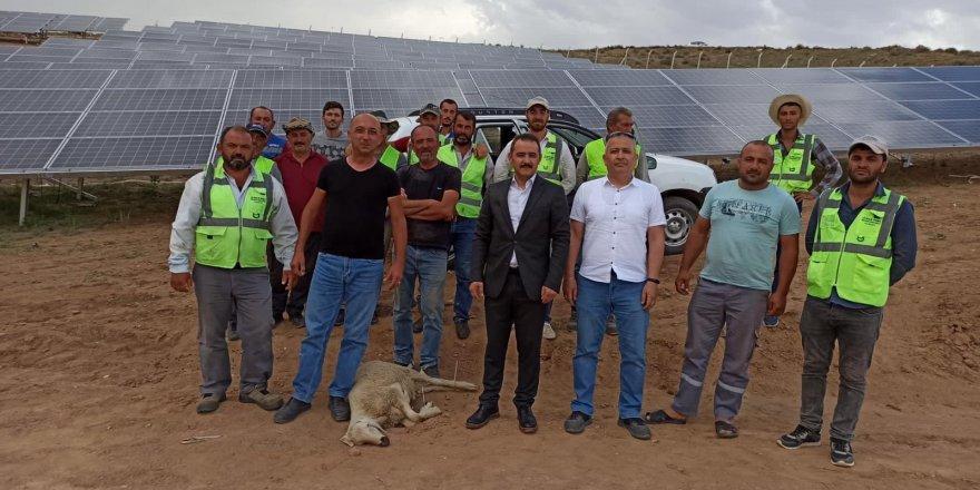 Şefaatli'ye Güneş Enerji Santrali panelleri  kurulumu tamamlandı