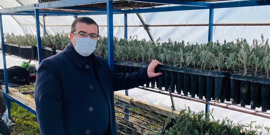 Çekerek Belediye Başkanı Çakır açıkladı: Her mevsim üretiyoruz