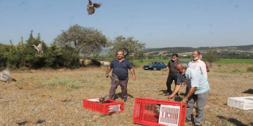 Yozgat'tan Balıkesir'e kene avcısı gönderildi