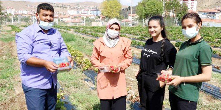 Yozgat'ta o proje ilk meyvesini verdi! Ailelere gelir kaynağı oluyor