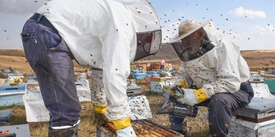 Yozgat'ta arıcılara kış hazırlığı uyarısı