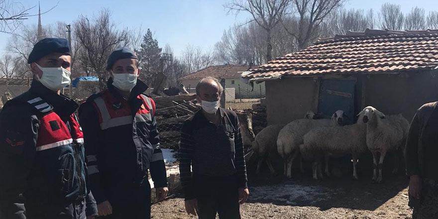 Sarıkaya'da kaybolan koyunları Jandarma buldu