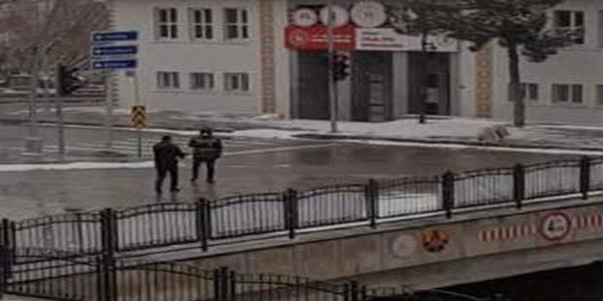 Yozgat'tan herkesin içini ısıtan görüntü