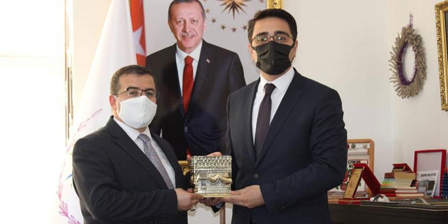 Ak Parti Yozgat Gençlik Kolları Çekerek'e çıkarma yaptı